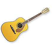 Fender Ron Emory Slope Shoulder Ash Butterscotch