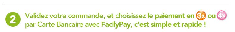 facily-pay-1-bis