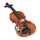 ShadowMICRO VIOLON ACTIF
