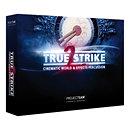Project SAMTrue Strike 2