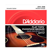 D'Addario EFT17 Flat Tops Medium 13-56