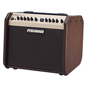FishmanLoudbox Mini PRO-LBX-500