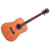 JM Forest SD16 NAT Dreadnought
