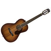 FenderPM-2E Mahogany