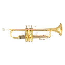 TP500 Trompette SIB