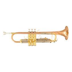 TP600 Trompette SIB